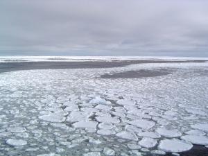 Glace de mer arctique (Crédit : Ted Scambos/NSIDC)