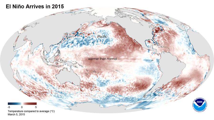 Anomalies de températures dans le Pacifique le 5 mars 2015 (Source : NOAA)