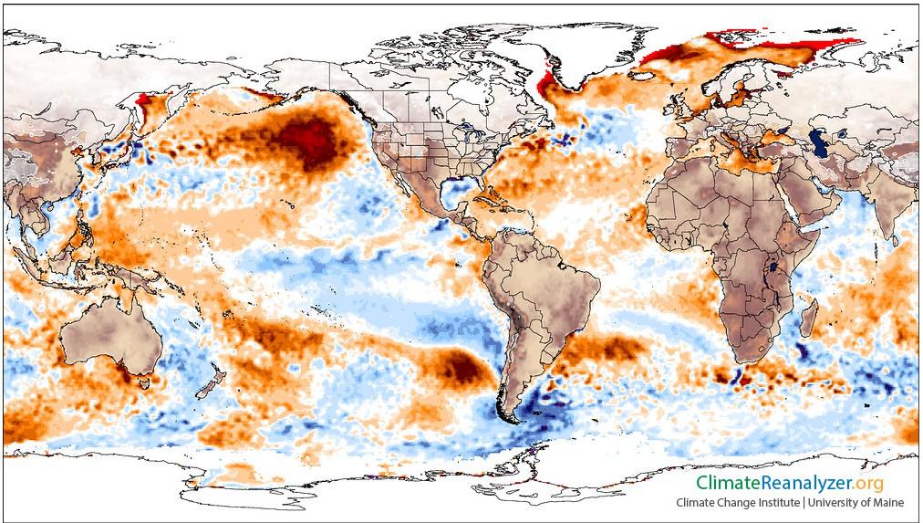 Anomalies de températures pour le 16 janvier 2014 : fort réchauffement des eaux dans le Golfe d'Alaska (Source : Climate Reanalyzer (http://cci-reanalyzer.org), Climate Change Institute, University of Maine, USA)