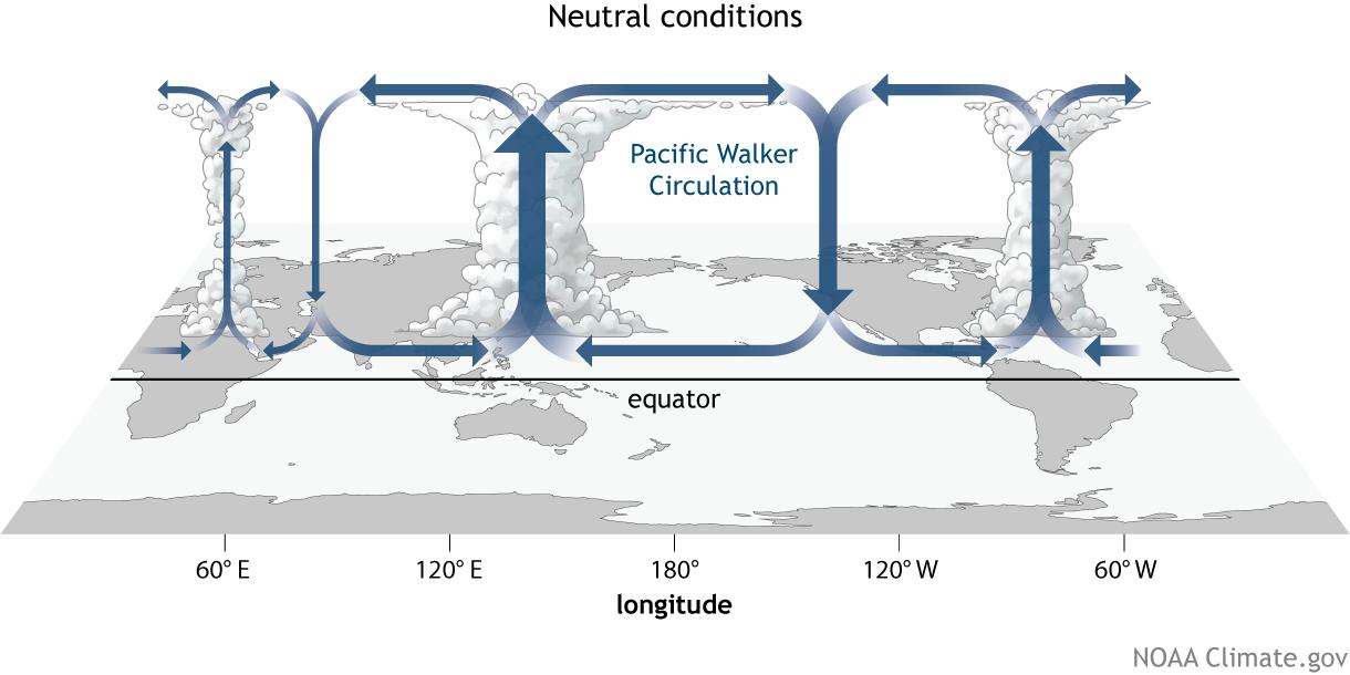 Comment la variabilité du Pacifique a été sous-estimée par les modèles