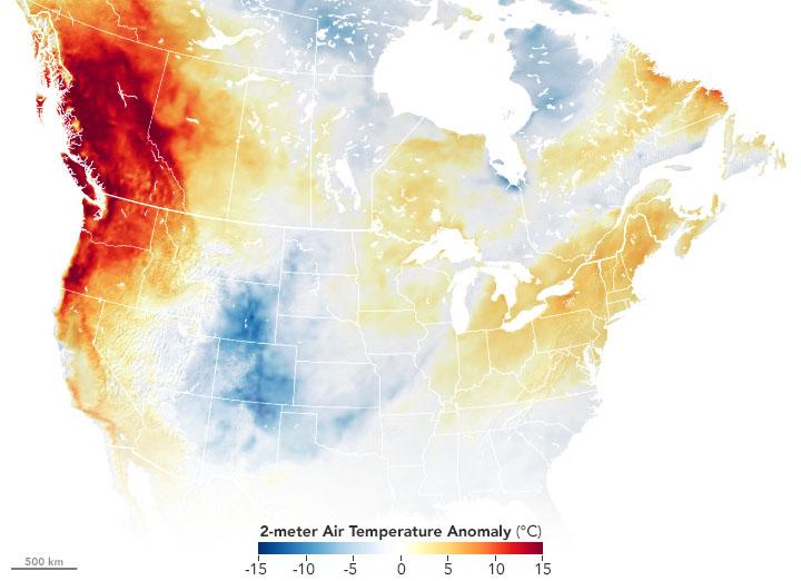 Vague de chaleur record dans le nord-ouest des USA et au Canada